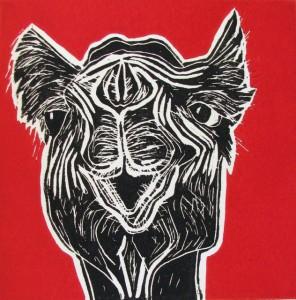 Camel I, Jill Kantor