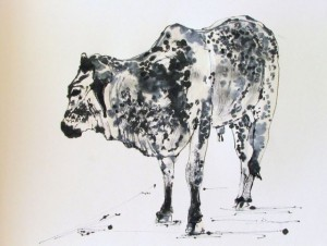 Painted Cow, Jill Kantor