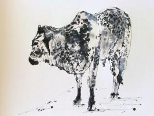 Painted Cow, Jill Kantor
