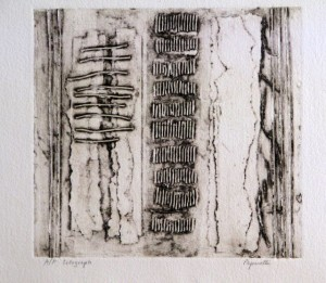 Black and White , Janet Paparelli